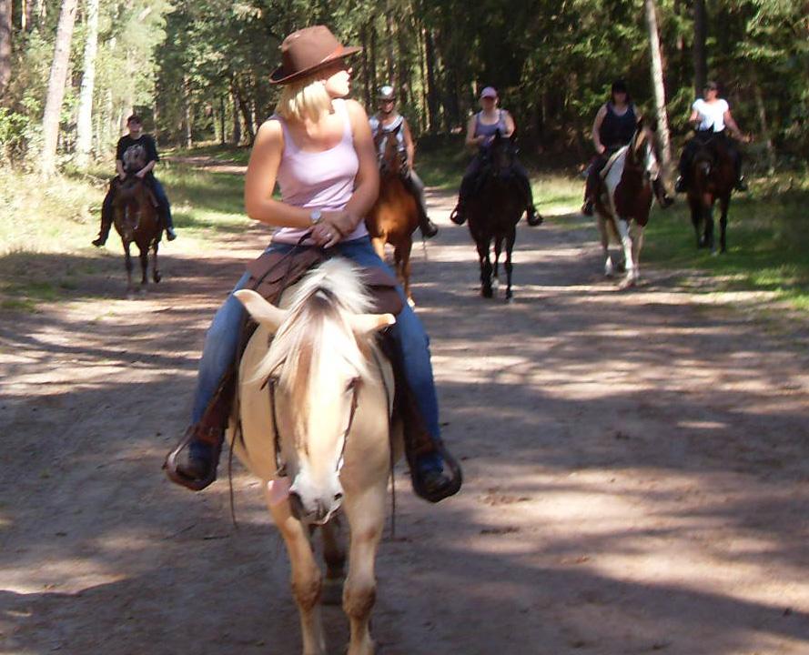 Reitergruppe auf dem Weg in den Gartower Forst