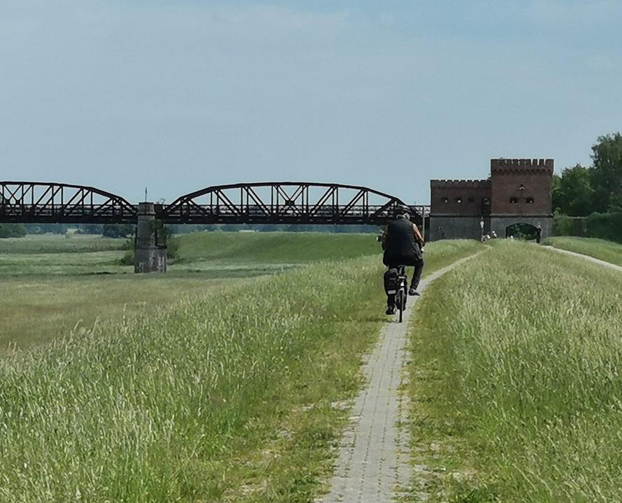Radfahrer auf dem Deich bei Dömitz mit Blick auf die alte Dömitzer Brücke