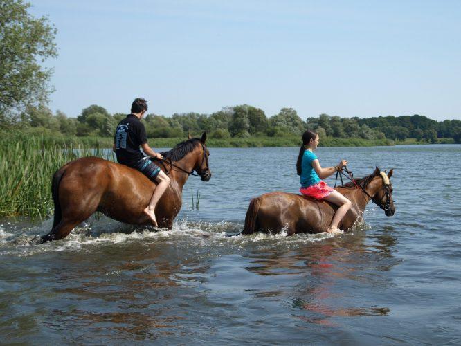 Feriengäste mit ihren Pferden im Gartower See